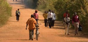 Outside Chinsali town, northern Zambia.   ©Center For International Forestry Research/Jeff Walker
