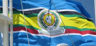 Trade - Africa - East African Community (310x150)